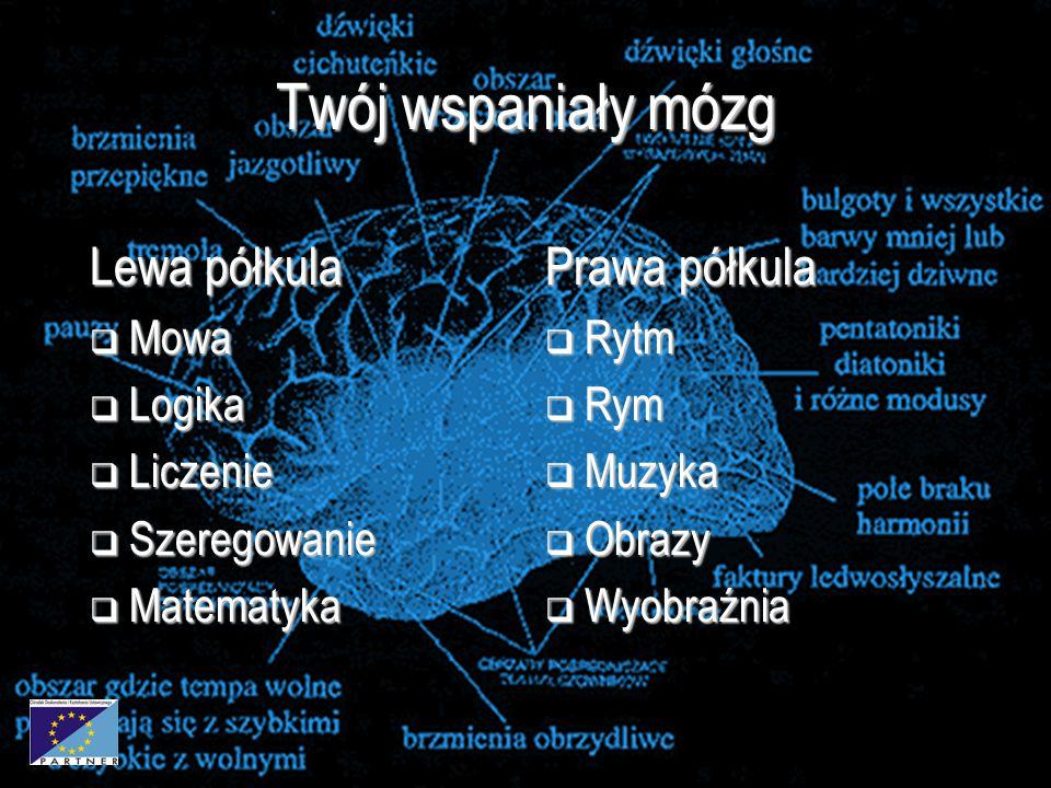 Twój wspaniały mózg Lewa półkula Prawa półkula Mowa Logika Liczenie