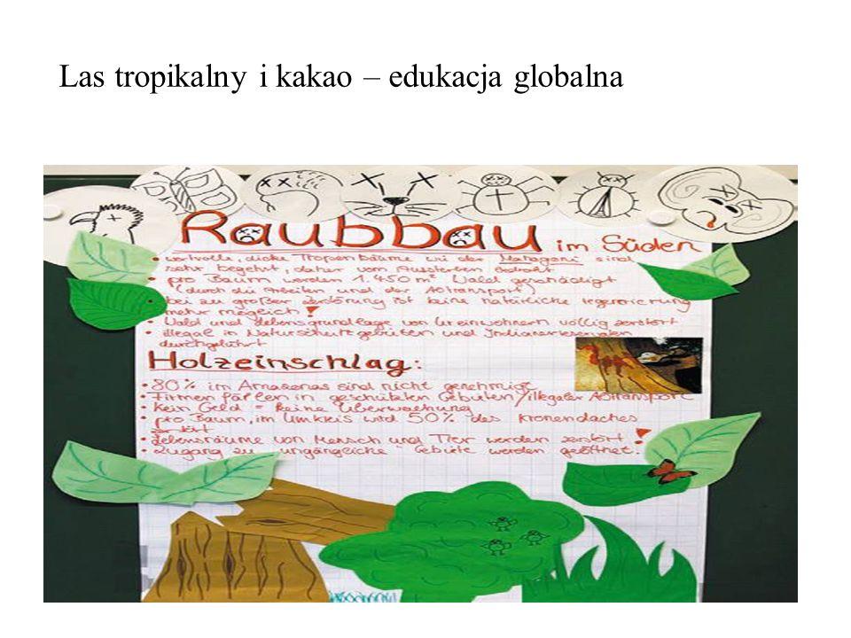 Las tropikalny i kakao – edukacja globalna
