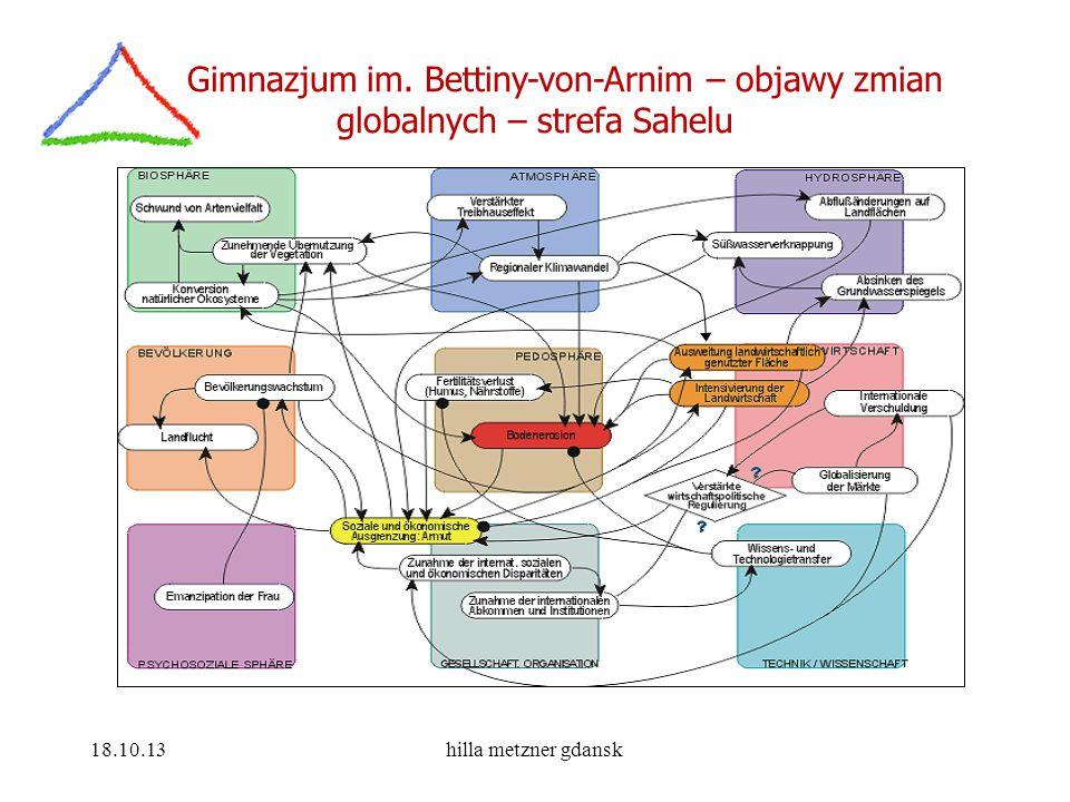 Gimnazjum im. Bettiny-von-Arnim – objawy zmian globalnych – strefa Sahelu