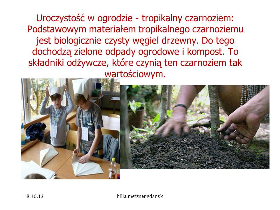 Uroczystość w ogrodzie - tropikalny czarnoziem: Podstawowym materiałem tropikalnego czarnoziemu jest biologicznie czysty węgiel drzewny. Do tego dochodzą zielone odpady ogrodowe i kompost. To składniki odżywcze, które czynią ten czarnoziem tak wartościowym.