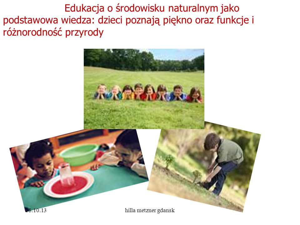 Edukacja o środowisku naturalnym jako podstawowa wiedza: dzieci poznają piękno oraz funkcje i różnorodność przyrody