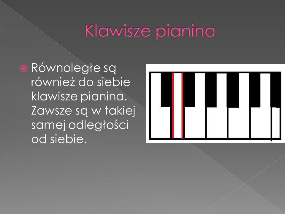 Klawisze pianina Równoległe są również do siebie klawisze pianina.