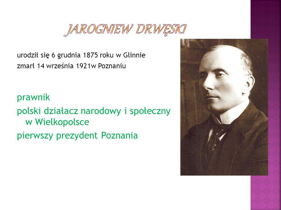 Jarogniew Drwęski prawnik