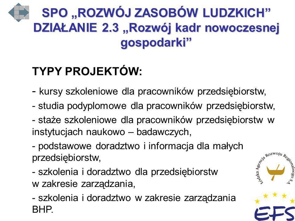 """SPO """"ROZWÓJ ZASOBÓW LUDZKICH DZIAŁANIE 2"""