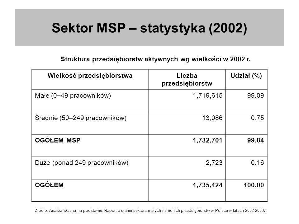 Sektor MSP – statystyka (2002)