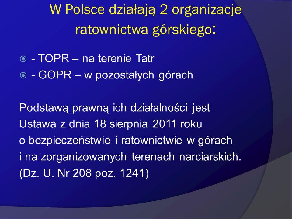 W Polsce działają 2 organizacje ratownictwa górskiego: