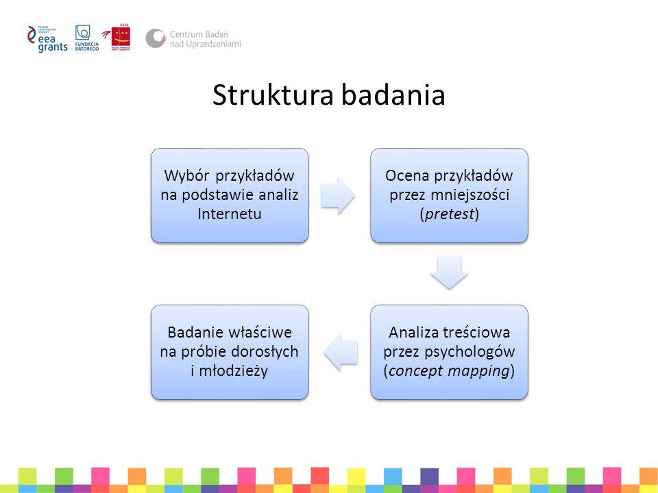 Struktura badania Wybór przykładów na podstawie analiz Internetu