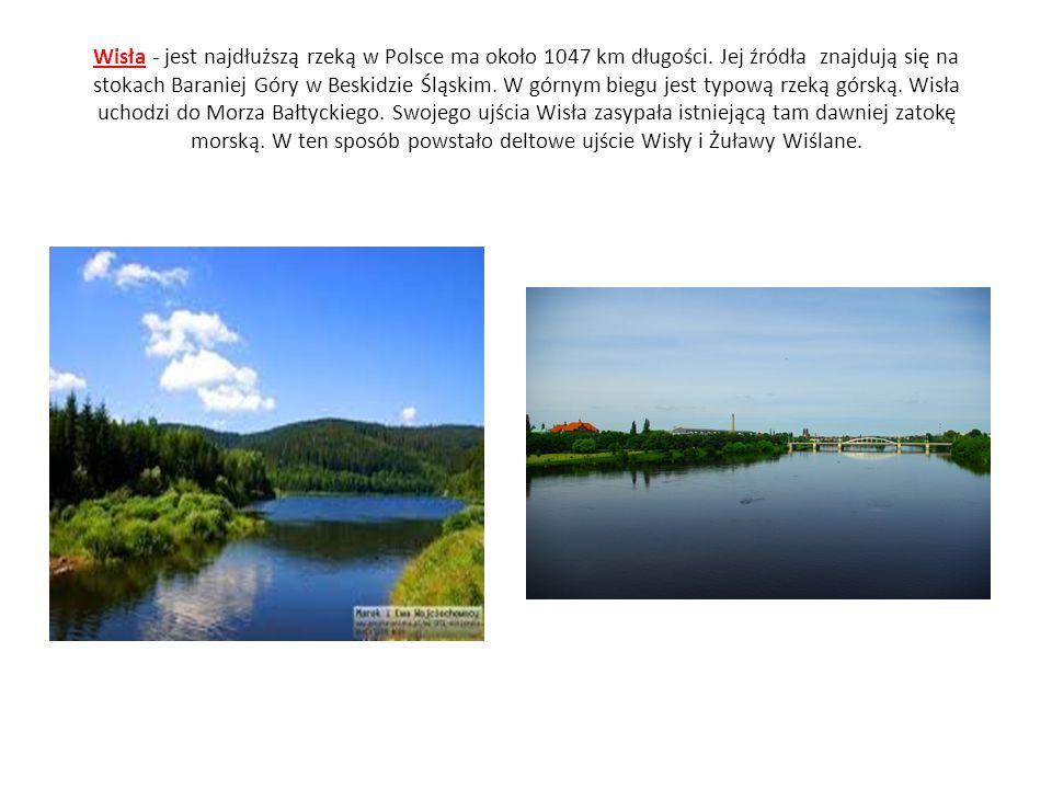 Wisła - jest najdłuższą rzeką w Polsce ma około 1047 km długości
