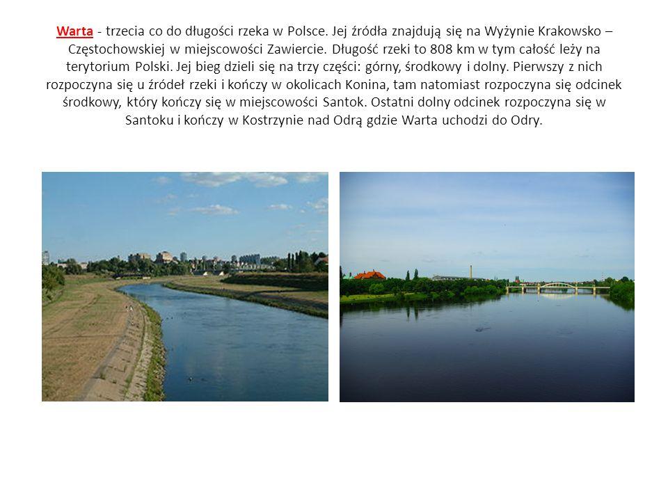 Warta - trzecia co do długości rzeka w Polsce
