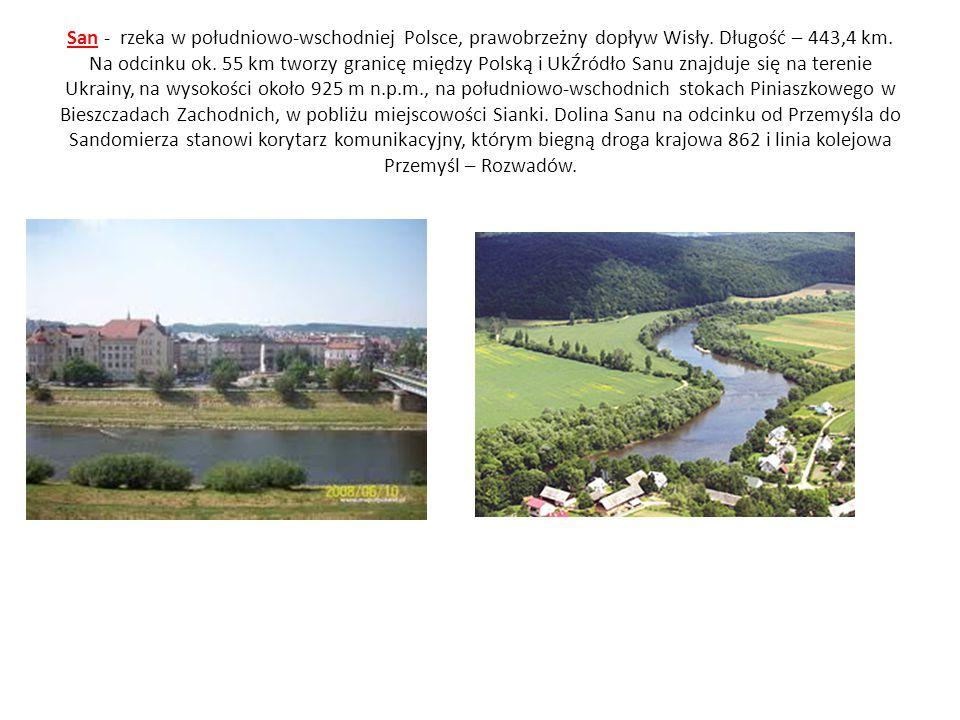 San - rzeka w południowo-wschodniej Polsce, prawobrzeżny dopływ Wisły