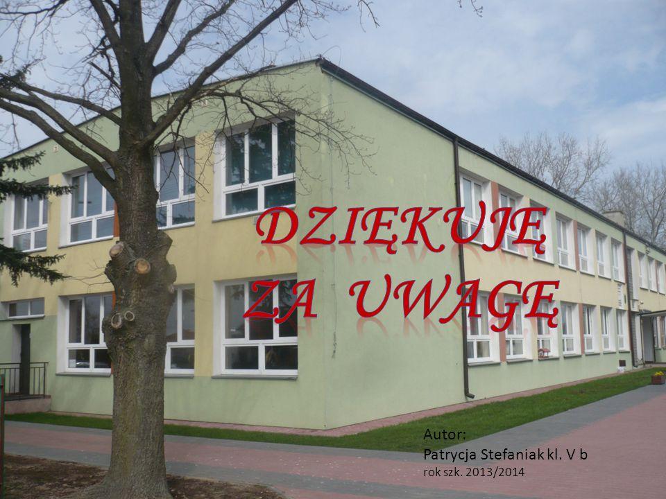 Dziękuję za uwagę Autor: Patrycja Stefaniak kl. V b rok szk. 2013/2014