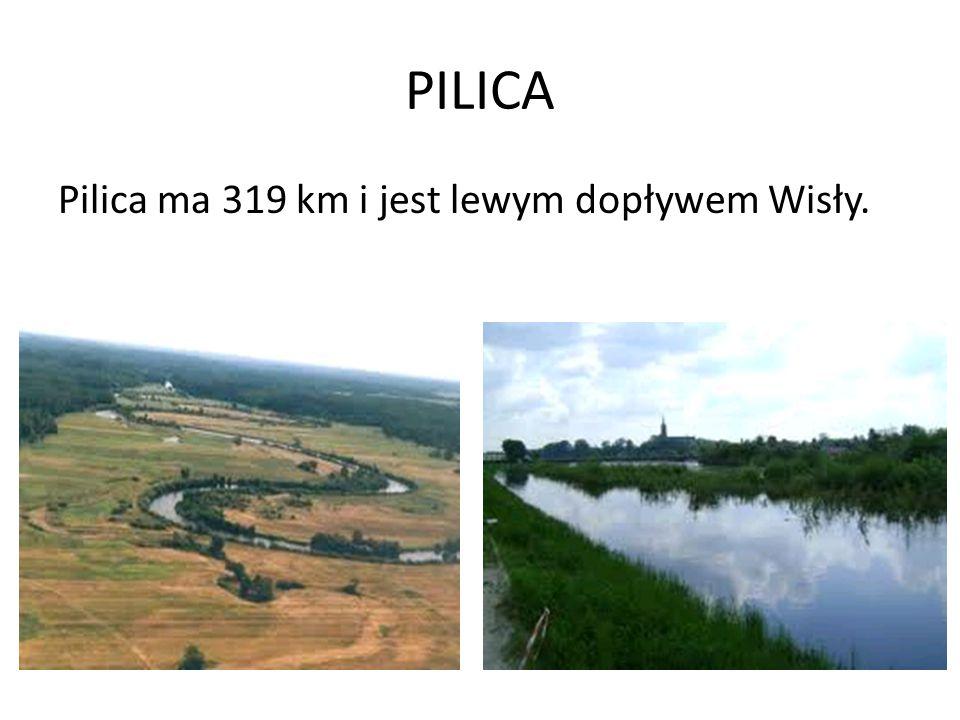 PILICA Pilica ma 319 km i jest lewym dopływem Wisły.
