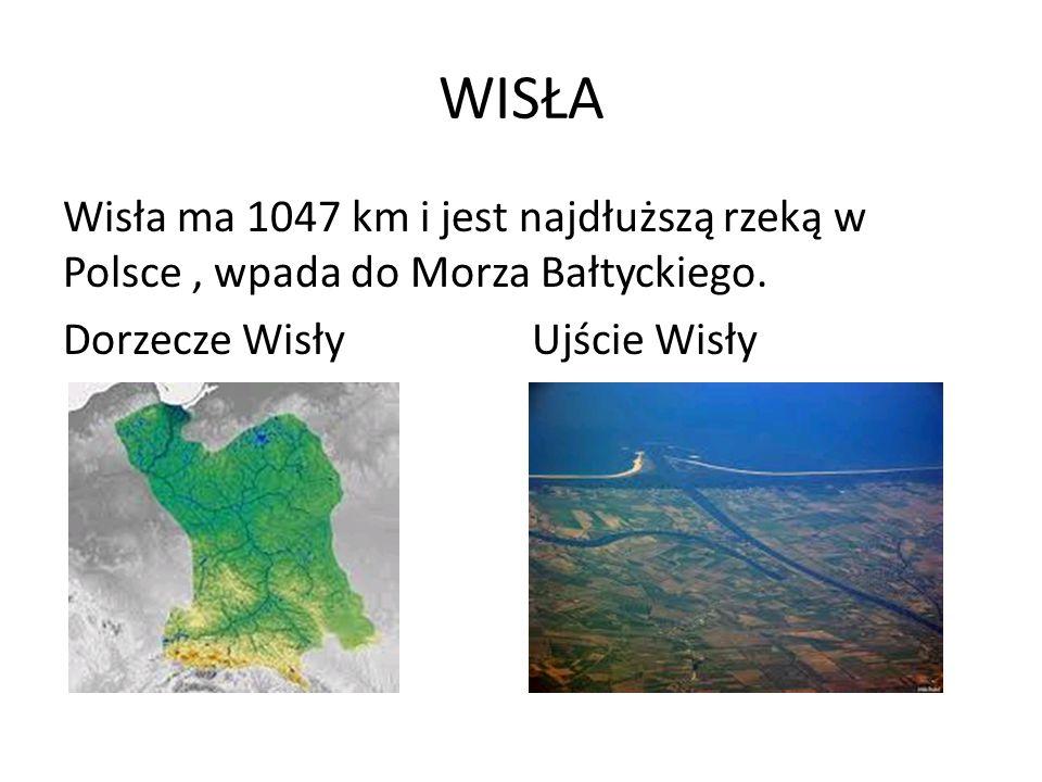 WISŁA Wisła ma 1047 km i jest najdłuższą rzeką w Polsce , wpada do Morza Bałtyckiego.
