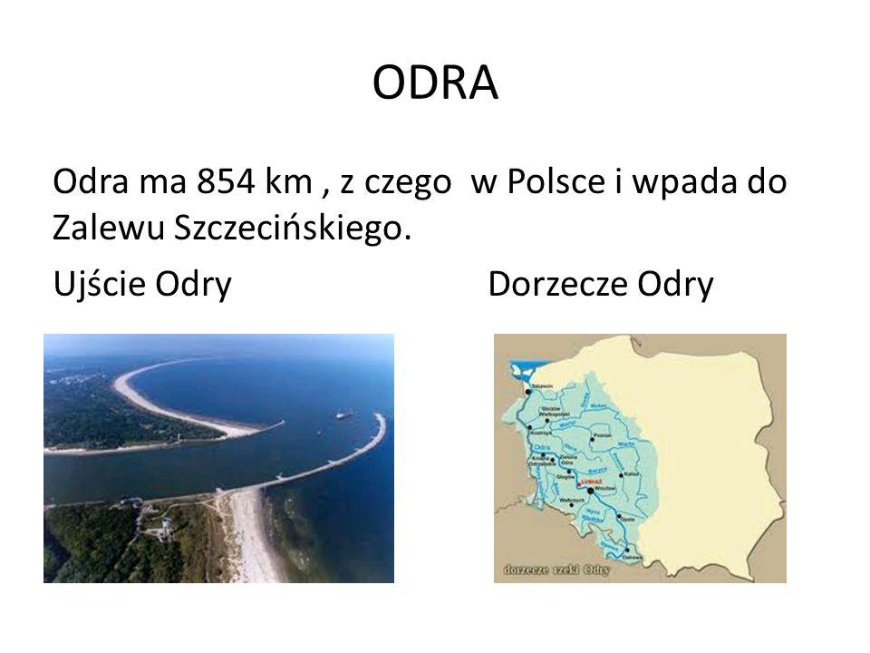 ODRA Odra ma 854 km , z czego w Polsce i wpada do Zalewu Szczecińskiego. Ujście Odry Dorzecze Odry