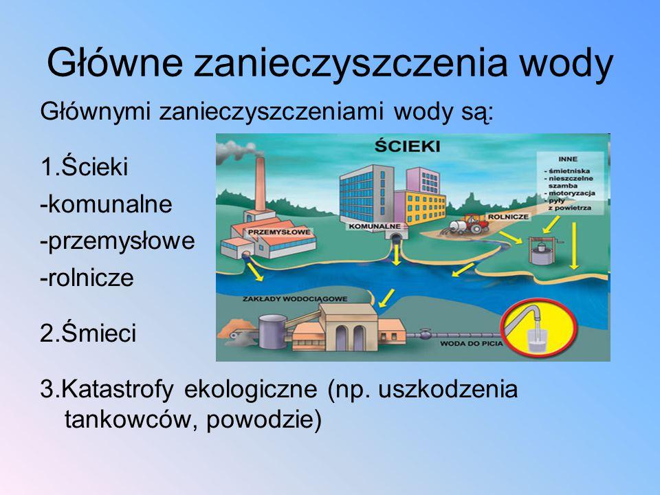 Główne zanieczyszczenia wody