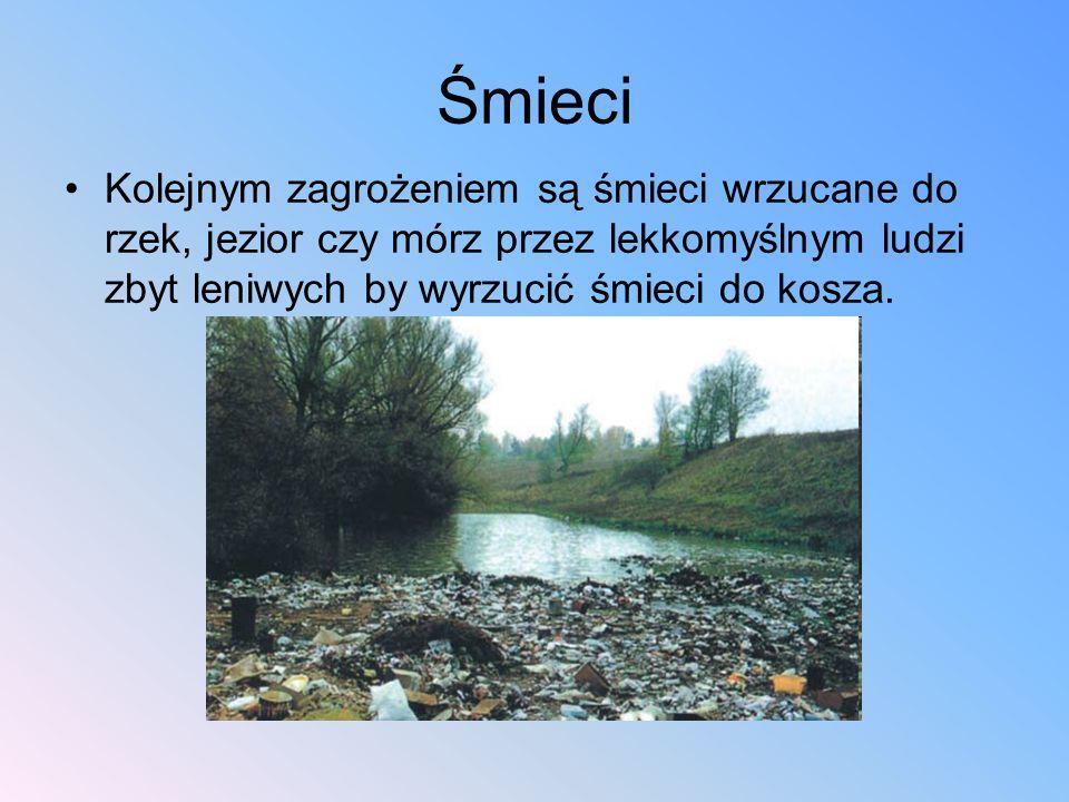 Śmieci Kolejnym zagrożeniem są śmieci wrzucane do rzek, jezior czy mórz przez lekkomyślnym ludzi zbyt leniwych by wyrzucić śmieci do kosza.