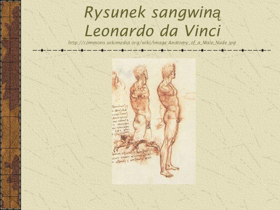 Rysunek sangwiną Leonardo da Vinci http://commons. wikimedia