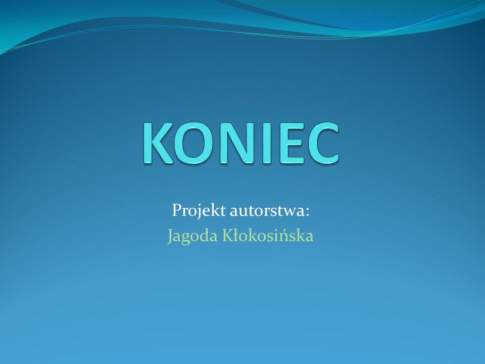 Projekt autorstwa: Jagoda Kłokosińska