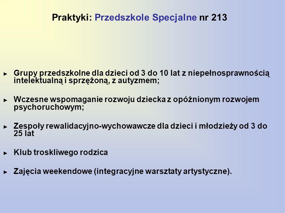 Praktyki: Przedszkole Specjalne nr 213