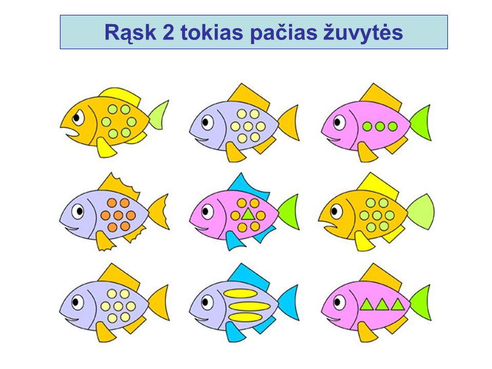 Rąsk 2 tokias pačias žuvytės