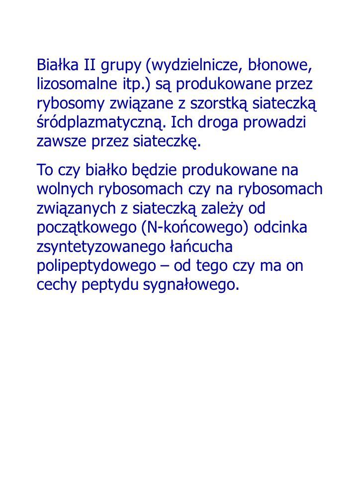 Białka II grupy (wydzielnicze, błonowe, lizosomalne itp