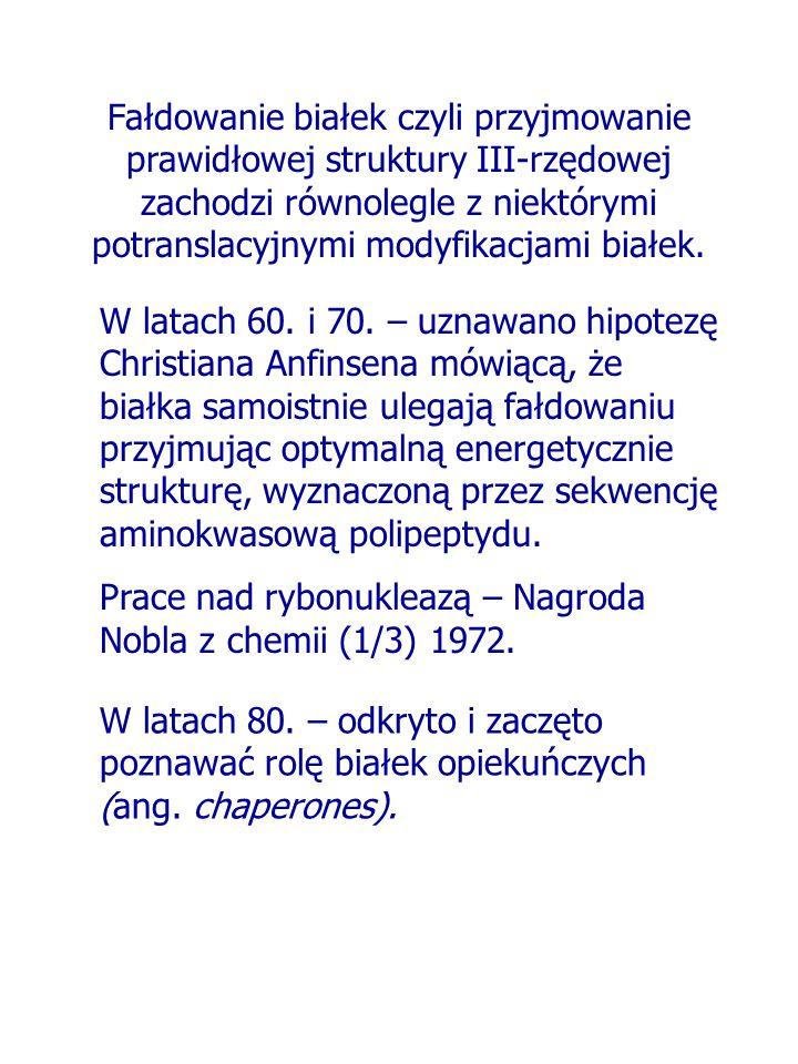 Fałdowanie białek czyli przyjmowanie prawidłowej struktury III-rzędowej zachodzi równolegle z niektórymi potranslacyjnymi modyfikacjami białek.
