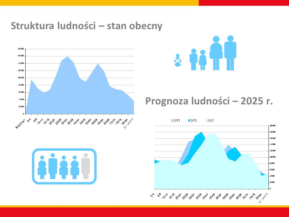Struktura ludności – stan obecny