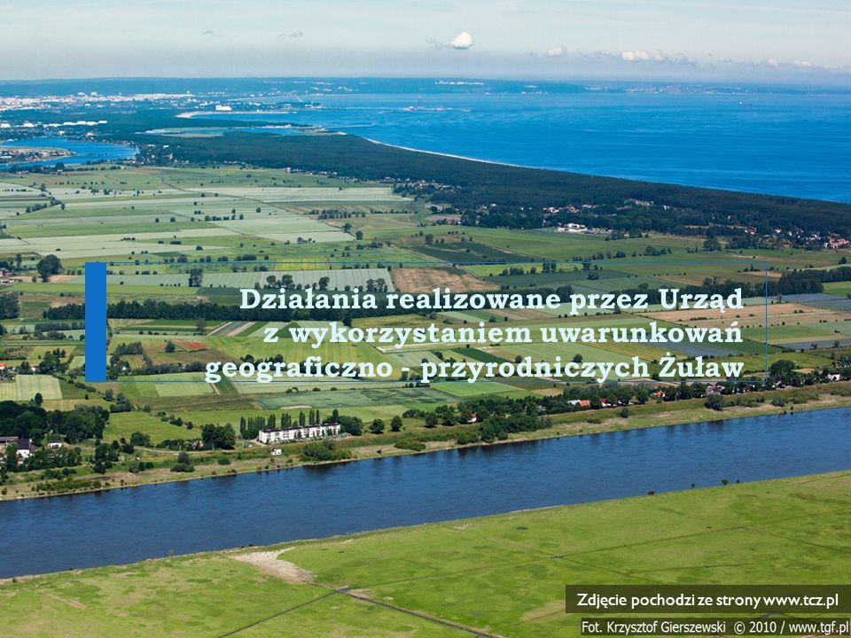 Zdjęcie pochodzi ze strony www.tcz.pl