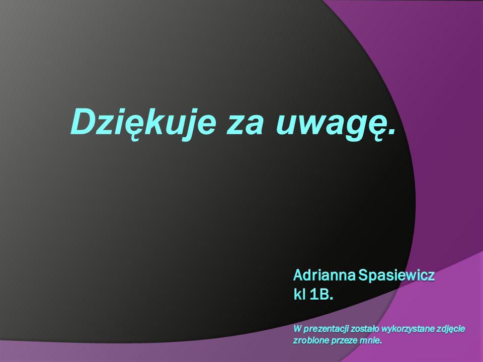 Dziękuje za uwagę. Adrianna Spasiewicz kl 1B.