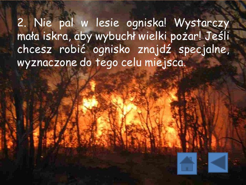 2. Nie pal w lesie ogniska. Wystarczy mała iskra, aby wybuchł wielki pożar.