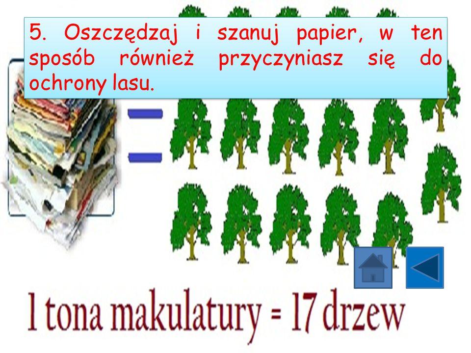 5. Oszczędzaj i szanuj papier, w ten sposób również przyczyniasz się do ochrony lasu.