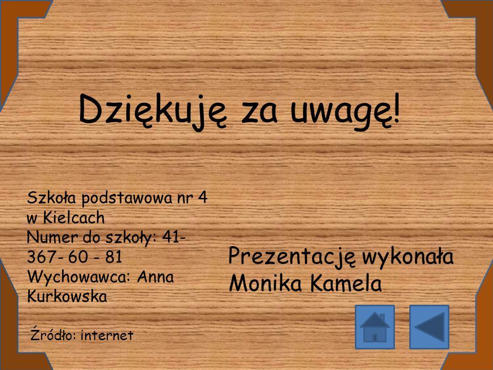 Dziękuję za uwagę! Prezentację wykonała Monika Kamela