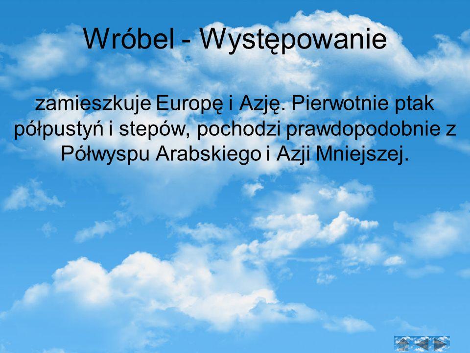 Wróbel - Występowanie zamieszkuje Europę i Azję.