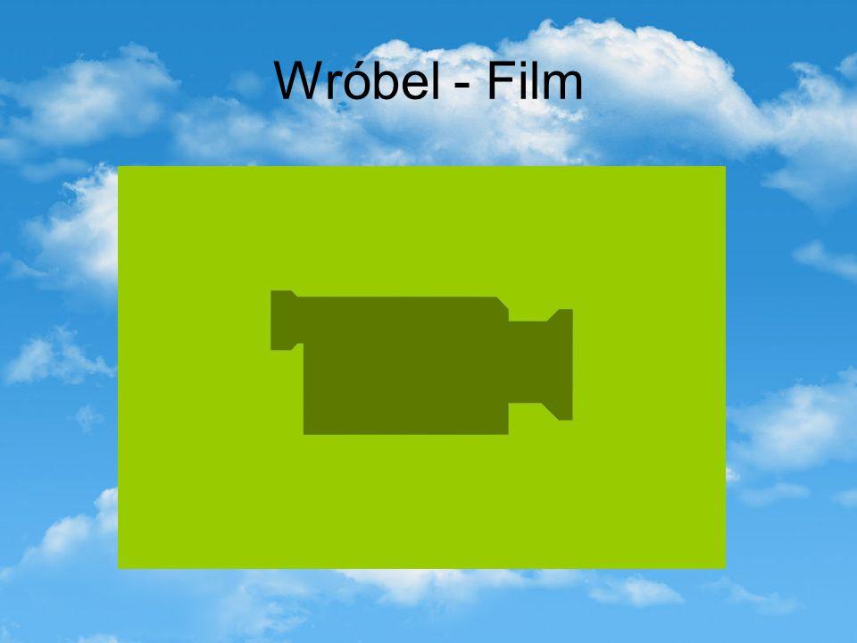 Wróbel - Film
