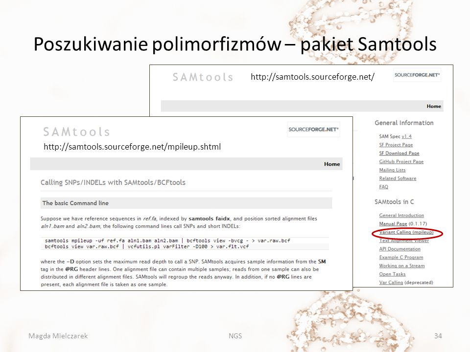 Poszukiwanie polimorfizmów – pakiet Samtools