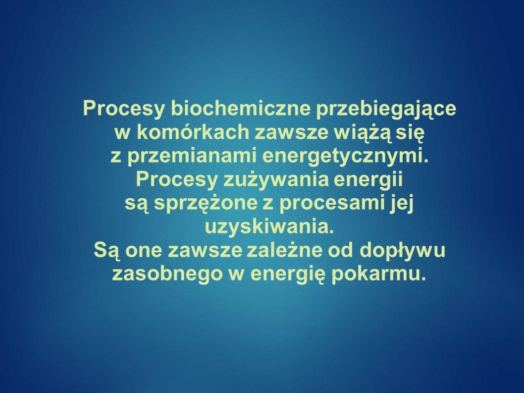 Procesy biochemiczne przebiegające w komórkach zawsze wiążą się