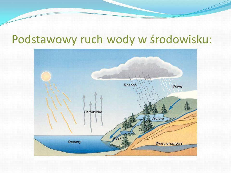 Podstawowy ruch wody w środowisku: