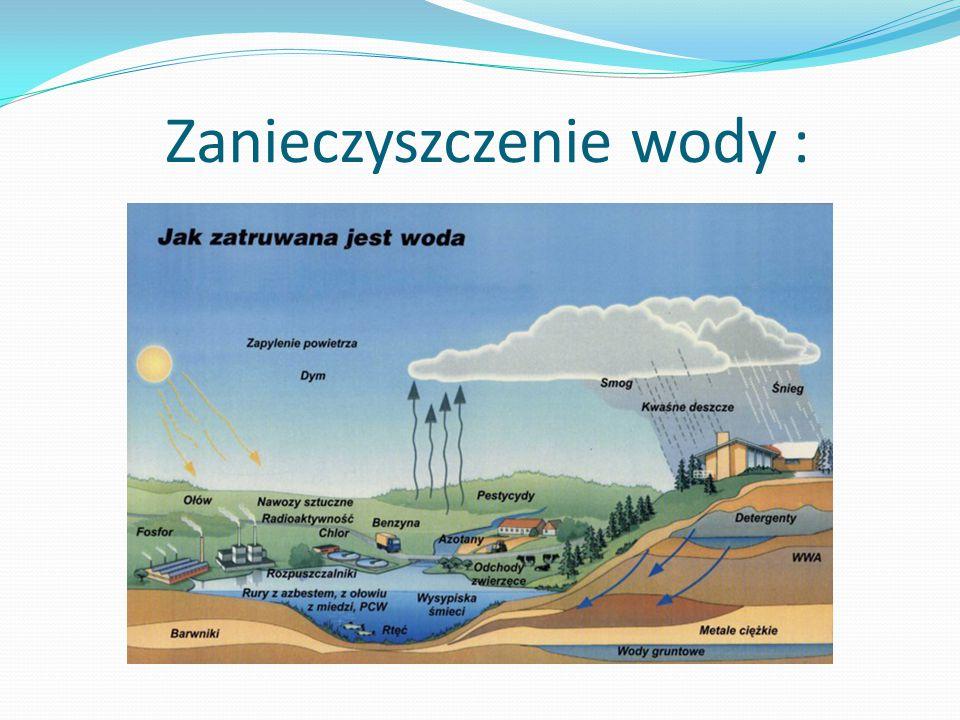 Zanieczyszczenie wody :