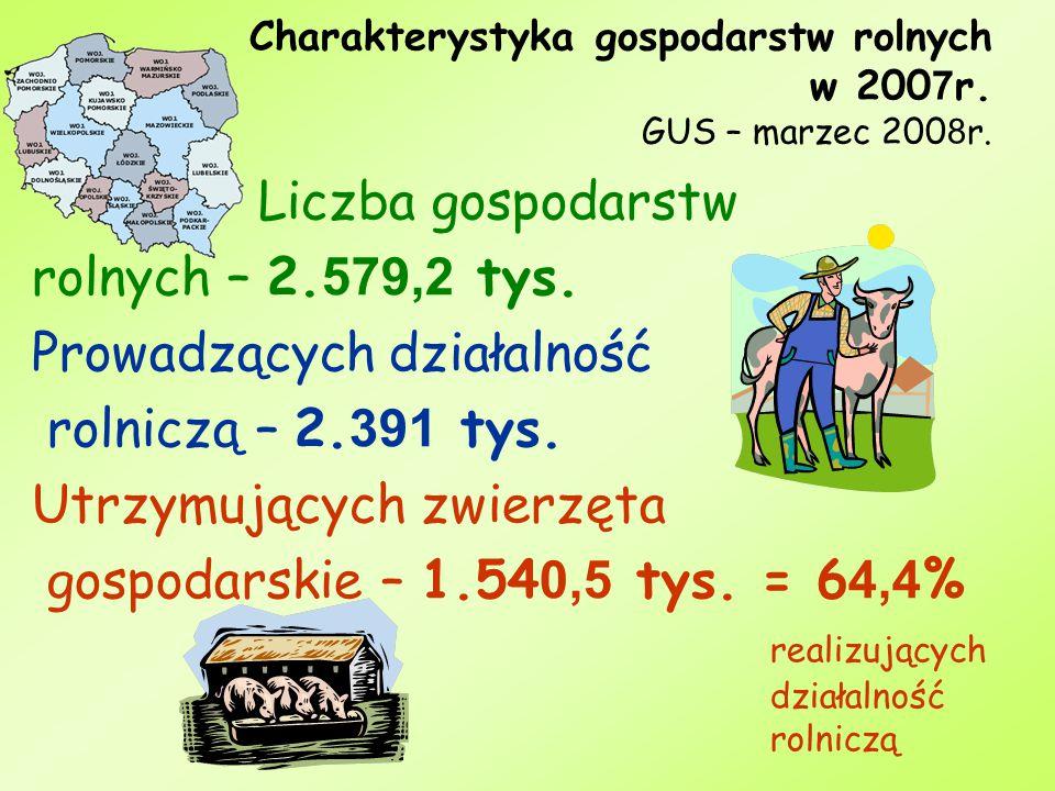 Charakterystyka gospodarstw rolnych w 2007r. GUS – marzec 2008r.