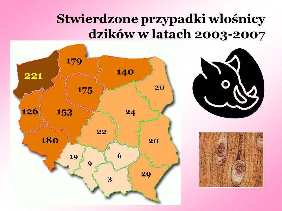 Stwierdzone przypadki włośnicy dzików w latach 2003-2007