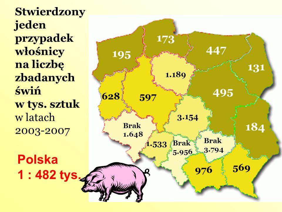 Stwierdzony jeden przypadek włośnicy na liczbę zbadanych świń w tys