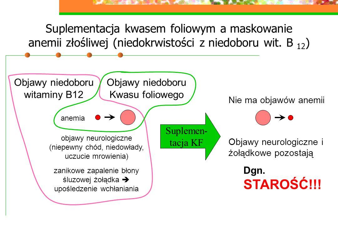 Suplementacja kwasem foliowym a maskowanie anemii złośliwej (niedokrwistości z niedoboru wit. B 12)