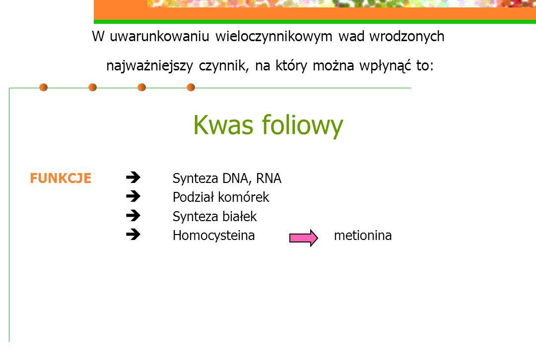  Homocysteina metionina