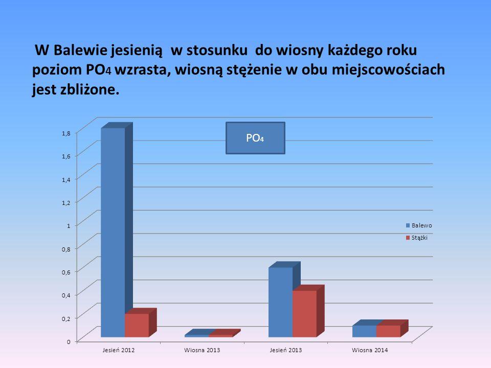 W Balewie jesienią w stosunku do wiosny każdego roku poziom PO4 wzrasta, wiosną stężenie w obu miejscowościach jest zbliżone.