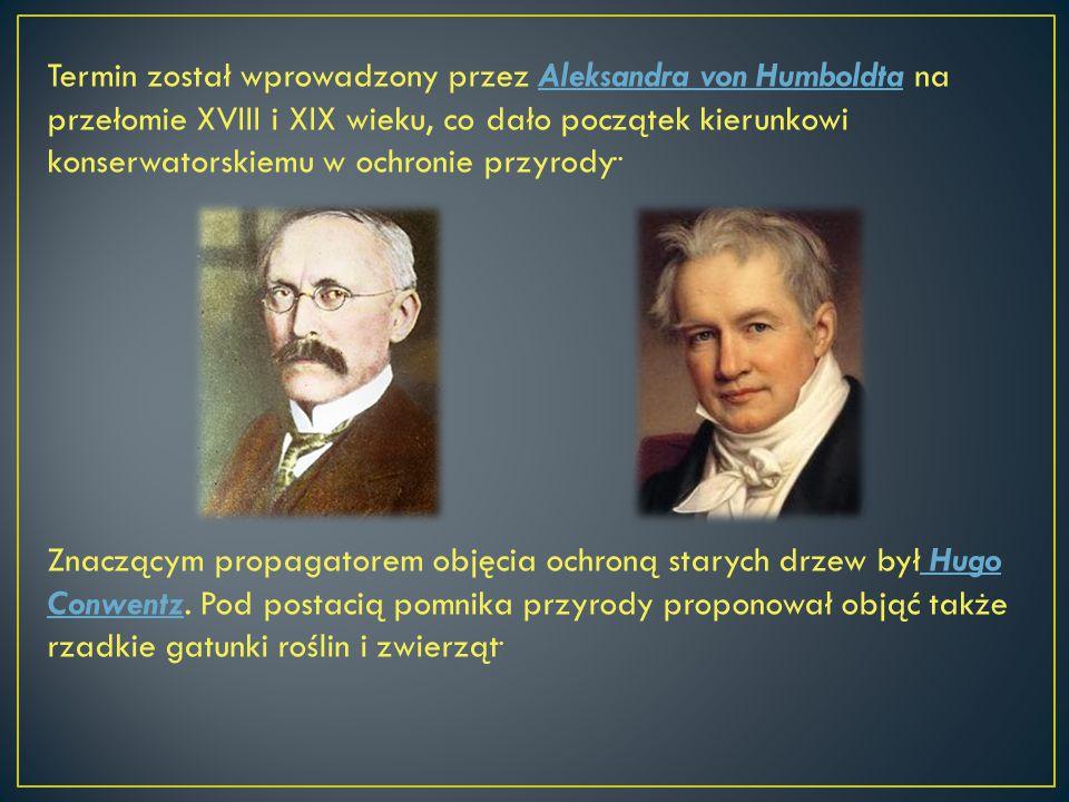 Termin został wprowadzony przez Aleksandra von Humboldta na przełomie XVIII i XIX wieku, co dało początek kierunkowi konserwatorskiemu w ochronie przyrody..