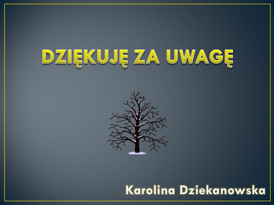 Karolina Dziekanowska