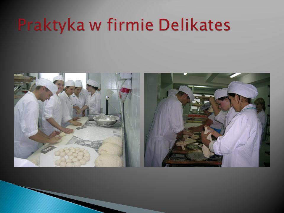 Praktyka w firmie Delikates