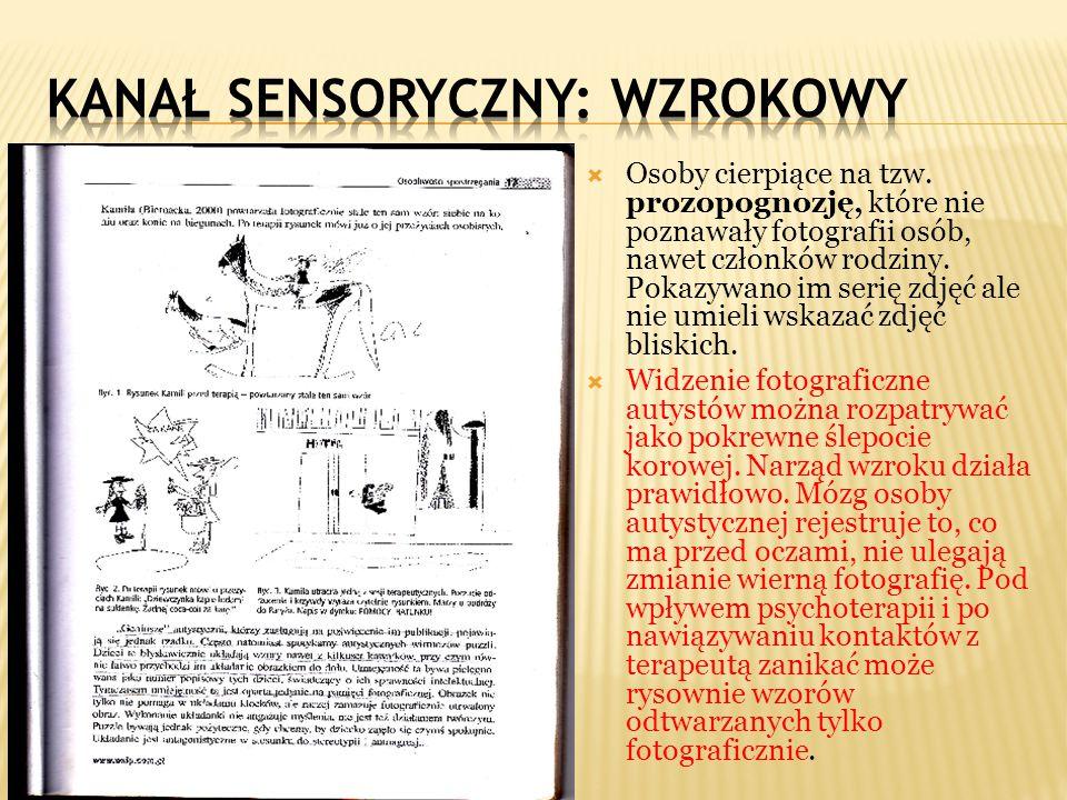 Kanał sensoryczny: WZROKOWY