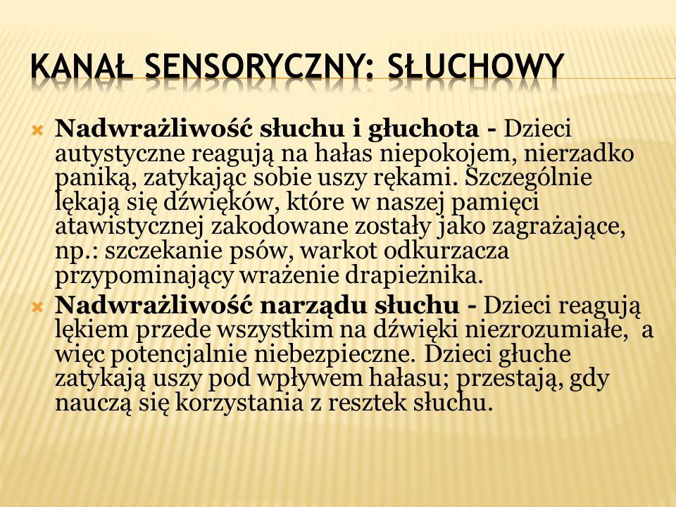 Kanał sensoryczny: SŁUCHOWY