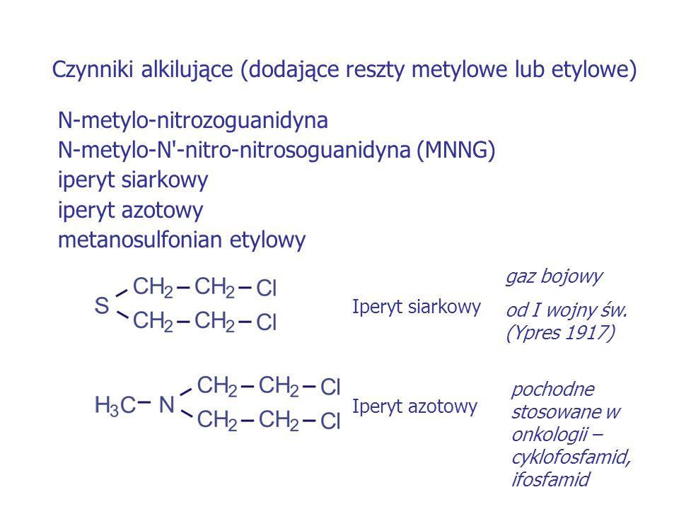 Czynniki alkilujące (dodające reszty metylowe lub etylowe)